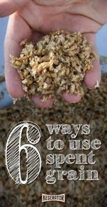 5 Ways to Use Spent Grain - 100 Beer And Alcohol Recipes - RecipePin.com