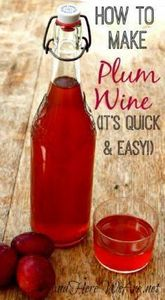 Quick and Easy Plum Wine recipe fr And Here We Are...  - sounds delicious! - 100 Beer And Alcohol Recipes - RecipePin.com