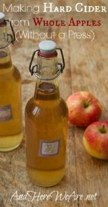 Making Hard Cider from Whole Apple - 100 Beer And Alcohol Recipes - RecipePin.com