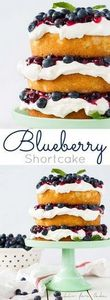 This Blueberry Shortcake is perfec - 200 Delicious Blueberry Recipes - RecipePin.com
