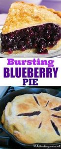 Homemade Blueberry Pie Recipe &amp - 200 Delicious Blueberry Recipes - RecipePin.com