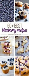 50+ Best Blueberry Recipes - I lov - 200 Delicious Blueberry Recipes - RecipePin.com