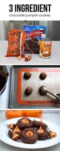 3 ingredient chocolate pumpkin coo - 300 Favorite Cookie Recipes - RecipePin.com