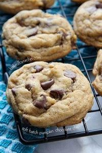 Perfect Soft Batch Pumpkin Chocola - 300 Favorite Cookie Recipes - RecipePin.com