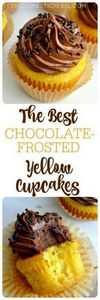 The BEST Chocolate-Frosted Yellow  - 280 Cupcake Recipes - RecipePin.com