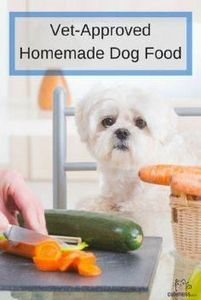 Save money and give your dog a hea - 400 Dog Food And Dog Treat Recipes - RecipePin.com