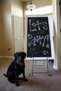 Dog Birthday Party...so doing this - 400 Dog Food And Dog Treat Recipes - RecipePin.com