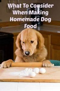 Planning on trying a few dog food  - 400 Dog Food And Dog Treat Recipes - RecipePin.com