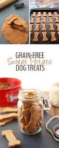 Treat your pup with these Grain-Fr - 400 Dog Food And Dog Treat Recipes - RecipePin.com