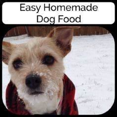 Learning how to make dog food is e - 400 Dog Food And Dog Treat Recipes - RecipePin.com