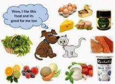 People Food, Pet Food That is Good - 400 Dog Food And Dog Treat Recipes - RecipePin.com