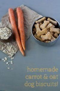 Carrot & oat homemade dog bisc - 400 Dog Food And Dog Treat Recipes - RecipePin.com