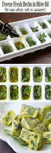 Freeze herbs while they are fresh  - 250 Heart Healthy Recipes - RecipePin.com