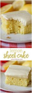 Lemon Sheet Cake - 250 Lemon Recipes - RecipePin.com