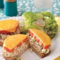 Canned Tuna Recipes - Easy Dinner  - 140 Canned Tuna Recipes - RecipePin.com
